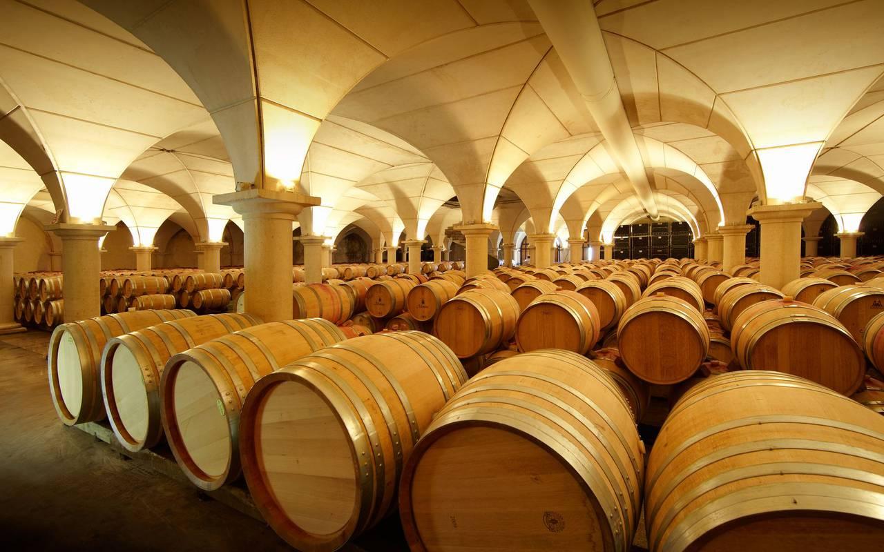Wine cellar, trip to lourdes, hotel Sainte-Rose